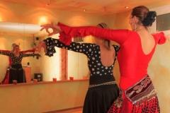 Flamenco-2014-klein-173