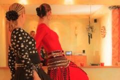 Flamenco-2014-klein-195