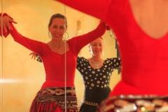 Flamenco-2014-klein-204