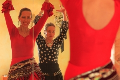 Flamenco-2014-klein-205